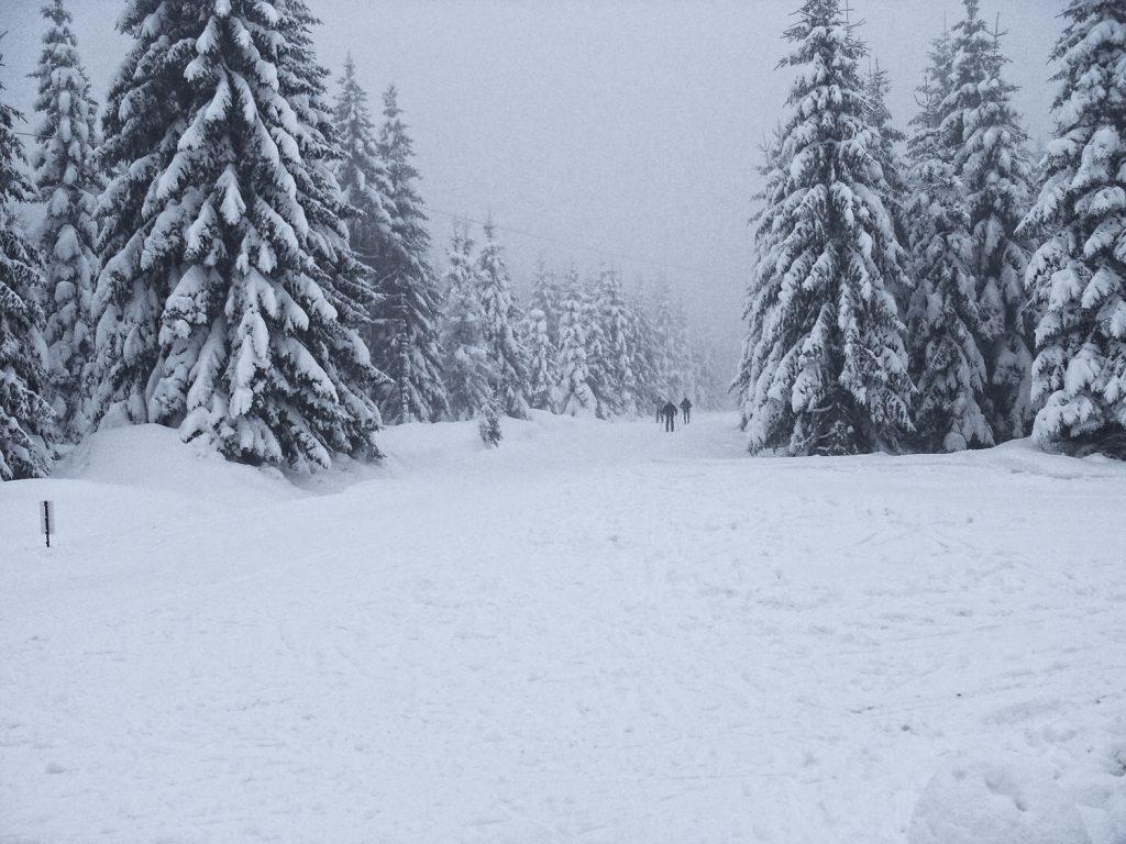 Zima w Górach Izerskich - Tajemniczy Dolny Śląsk