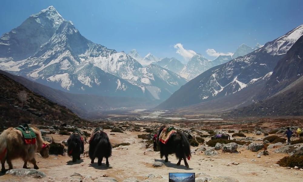 Parking dla jaków - Podróż w Himalaje - Źródło: https://www.youtube.com