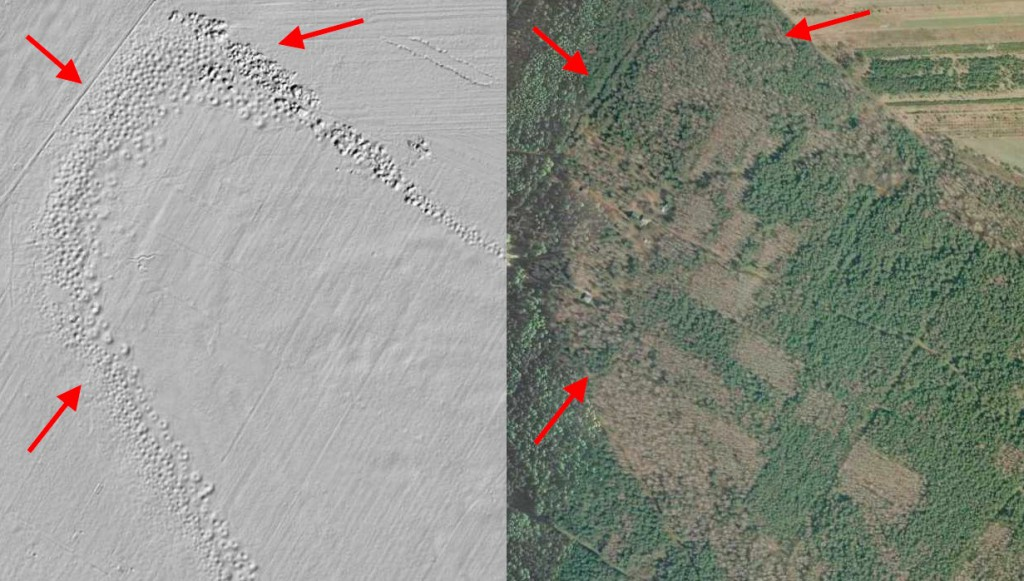 Krzemionki Opatowskie - Mapa LIDAR Źródło: Geoportal