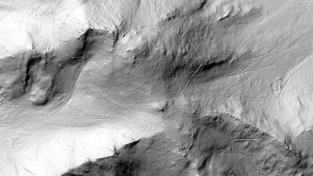 Obraz LIDAR i ślady wału na Raduni - Źródło: geoportal.gov.pl