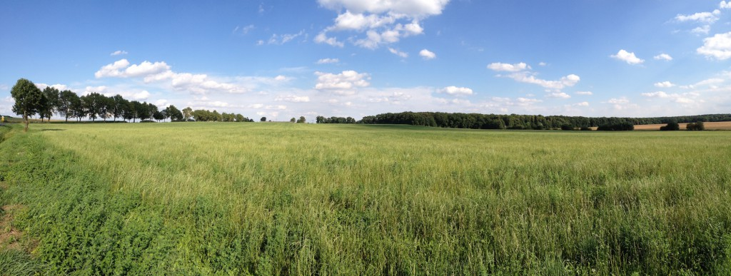 Pole - Panorama wykonana iPhonem 4s
