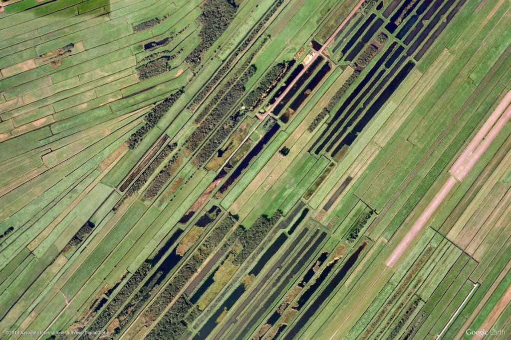 Pola Uprawne w Holandii - Zdjęcia Ziemi Źródło: earthview.withgoogle.com