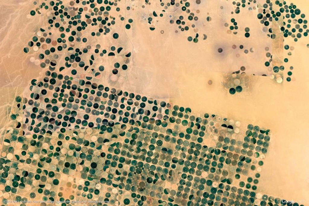 Pola Uprawne w Arabii Saudyjskiej - Zdjęcia Ziemi Źródło: earthview.withgoogle.com