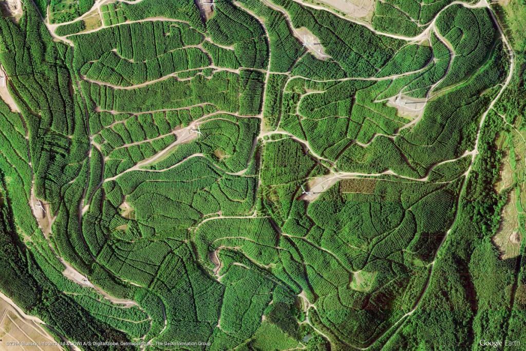 Walia, Wielka Brytania - Zdjęcia Ziemi Źródło: earthview.withgoogle.com