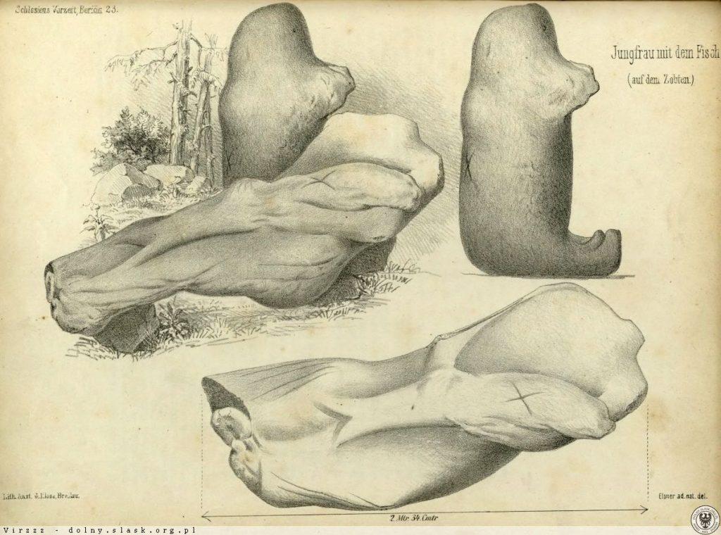 Panna z Rybą i Niedźwiedź - Niemiecki szkic - Źródło: dolny-slask.org.pl