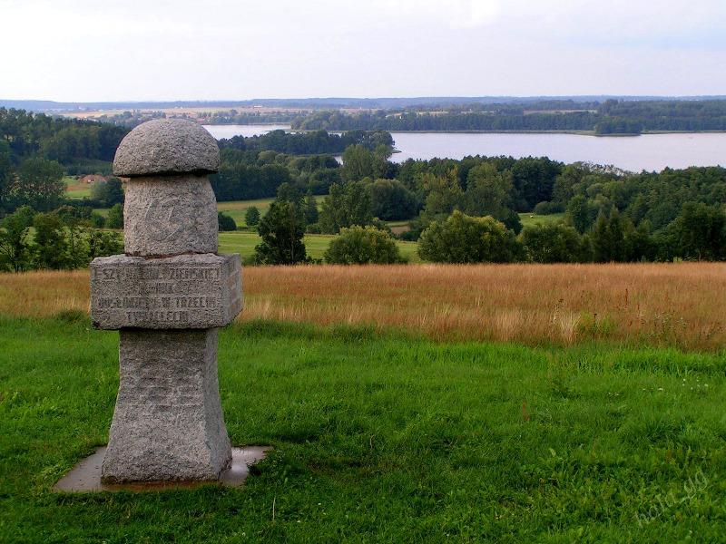 Pomnik Grzyba - Foto: Halina Gniewkowska-Gniadek