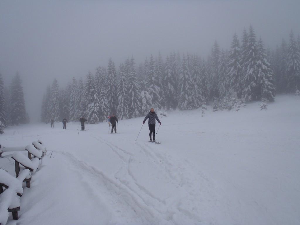 Śnieżne Góry Izerskie - Ciekawe Miejsca na Dolnym Śląsku