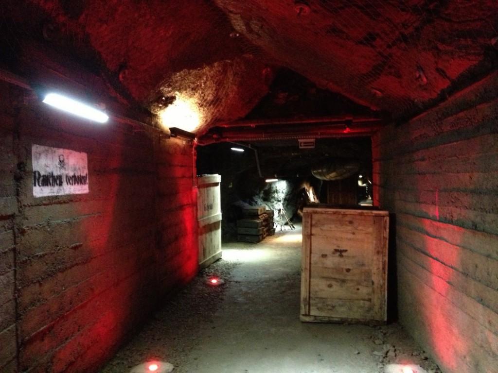 Projekt Arado w Kamiennej Górze - Atrakcje Turystyczne Dolny Śląsk