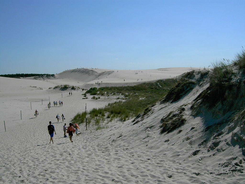 Wydma Łączka - Ciekawe miejsca nad Morzem Bałtyckim - Foto: Klaus-Dieter Keller Źródło: commons.wikimedia.org