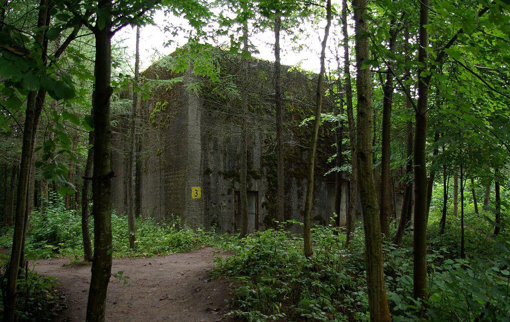 Bunkry w Mamerkach - Atrakcje Turystyczne Mazury - Foto: Janericloebe