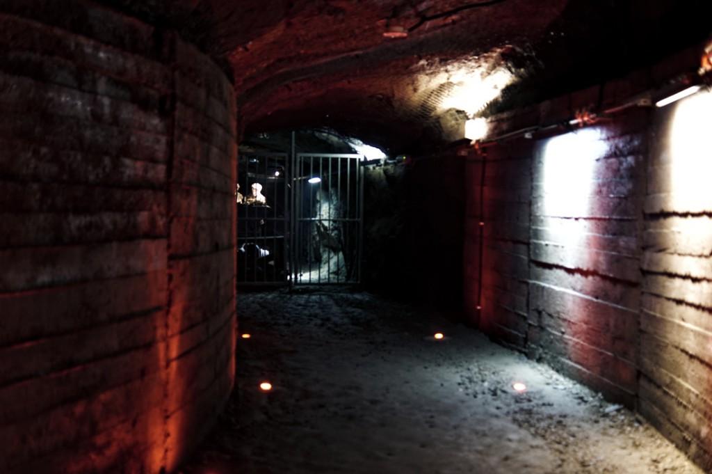 Podziemia Kamiennej Góry - Projekt Arado