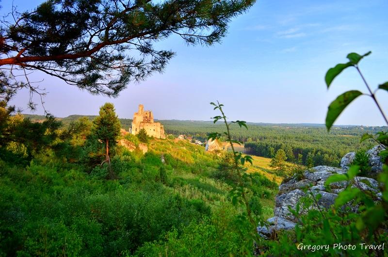 Zamek w Mirowie - Szlak Orlich Gniazd - Foto: Grzegorz Posała
