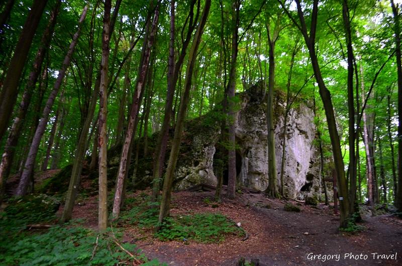 """Ruiny zamku i rezerwat """"Ostrężnik"""" - Foto: Grzegorz Posała"""
