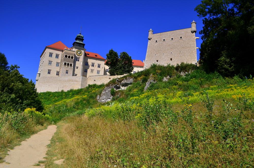Zamek Pieskowa Skała - Szlak Orlich Gniazd - Foto: Grzegorz Posała