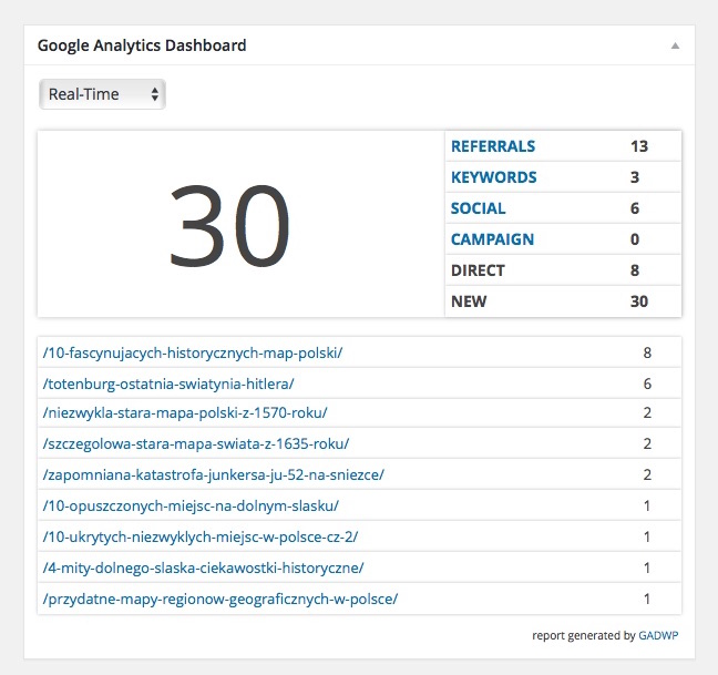 Panel ze staystykami na Dashboardzie WordPressa - Google Analytics Dashboard for WP