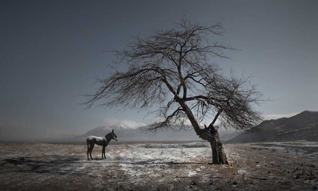 Chińska wioska w prowincji Hebei - Foto: ® Maoyuan Cui, China, Shortlist, Professional Landscape, 2016 Sony World Photography Awards