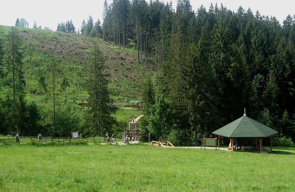 Trójstyk Polski, Czech i Słowacji - Źródło: commons.wikimedia.org Foto: Ricardo77