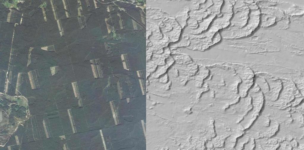 Wydmy w Puszczy Bydgoskiej - Źródło: Geoportal