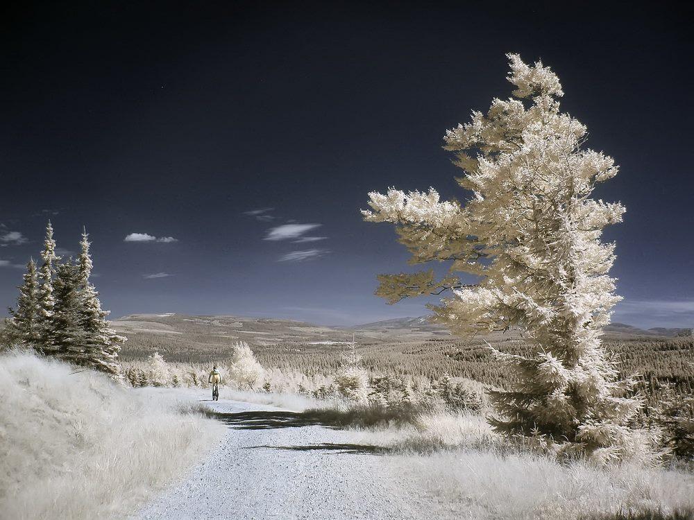 Góry Izerskie po stronie czeskiej - Foto: Kamil Pluta