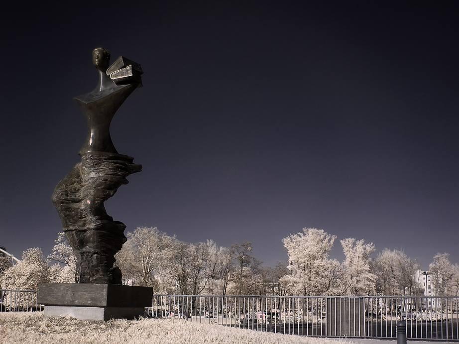 Pomnik Powodzianki we Wrocławiu - Foto: Kamil Pluta