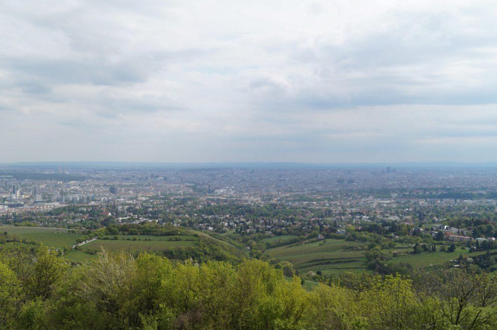 Widok na Wiedeń ze wzgórza Kahlenberg - Śladami Odsieczy Wiedeńskiej