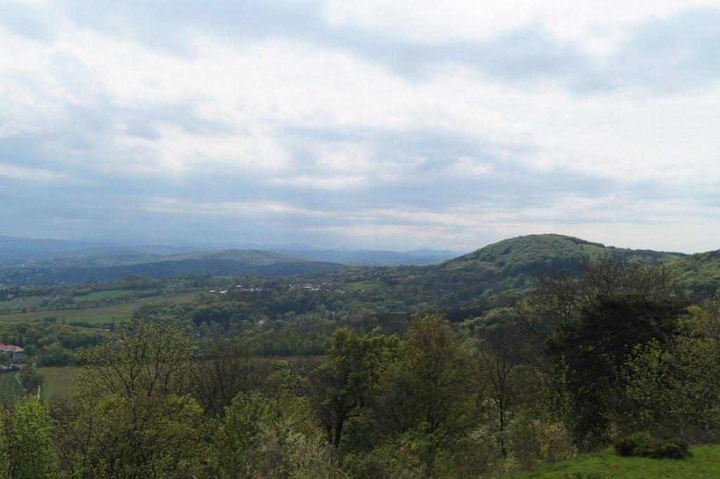 Widok ze wzgórza Kahlenberg na Wiedeński Las, z którego polska husaria nacierała na tureckie obozowiska