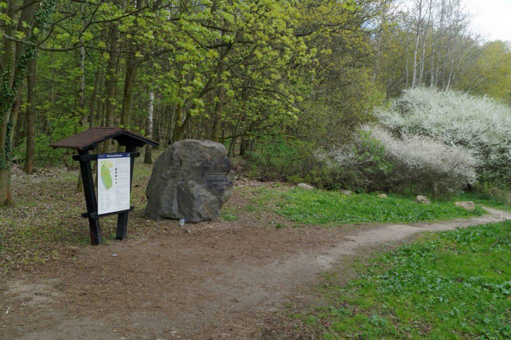 Ścieżka Dydaktyczna - Rezerwat Przyrody Meteoryt Morasko