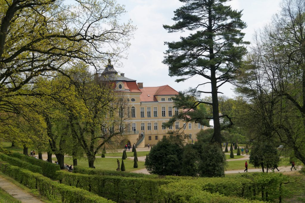 Zespół pałacowo-parkowy w Rogalinie