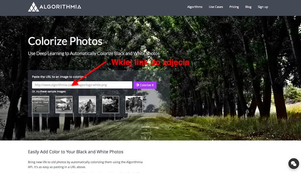 Automatyczna Koloryzacja Czarno-Białych Fotografii