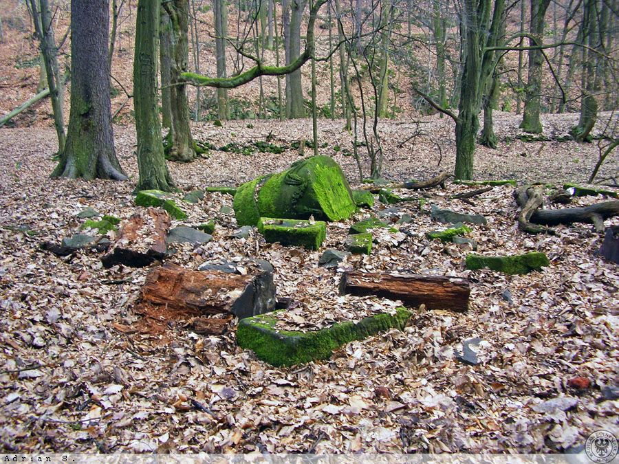 Pozostałości pomnika dzieci Hochbergów - Zapomniane miejsca na Dolnym Śląsku - Foto: Adrian Sitko Źródło: dolny-slask.org.pl