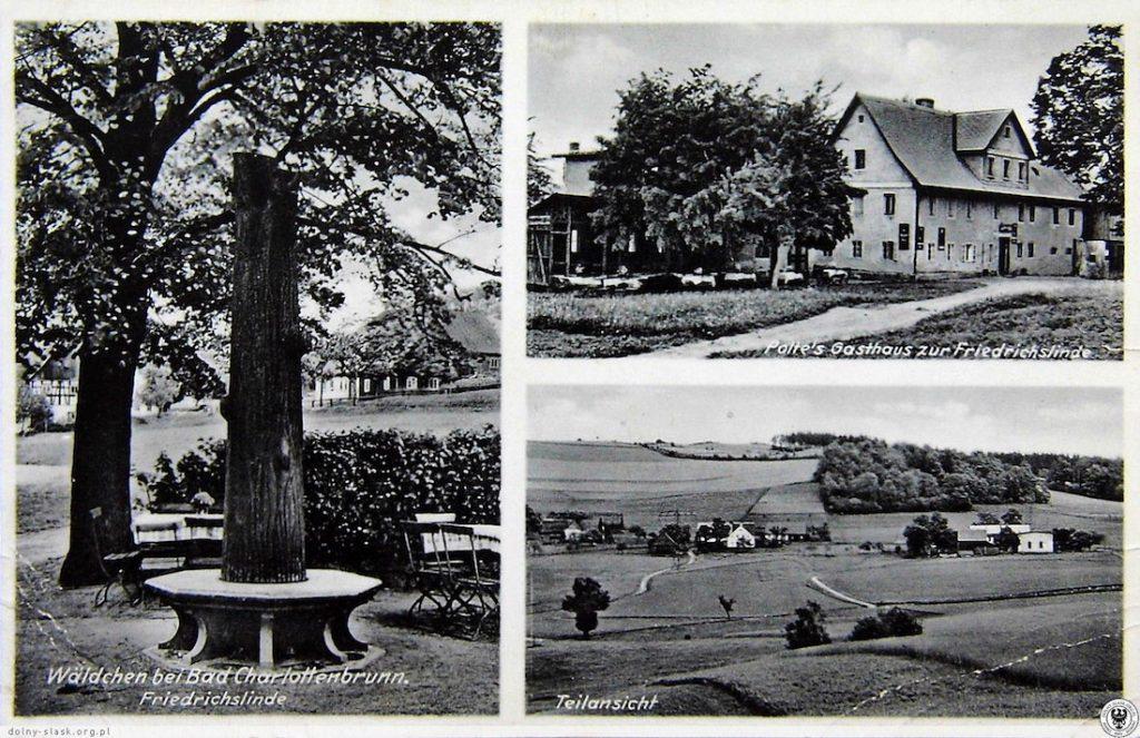 Po lewej stronie pocztówki Friedrichslinde - Lipa Fryderyka - Źródło: dolny-slask.org.pl