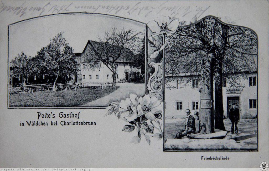 Plot's Gasthof - Gospoda Poltego i Lipa Fryderyka - Źródło: dolny-slask.org.pl