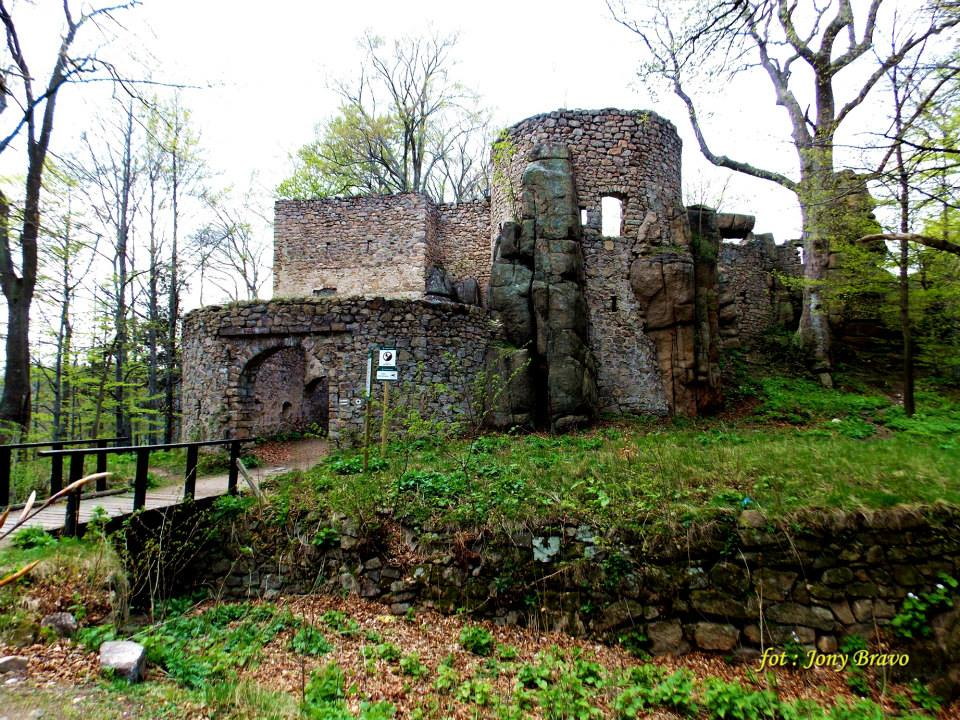 Zamek Bolczów - Foto: Robert Karczmarczyk