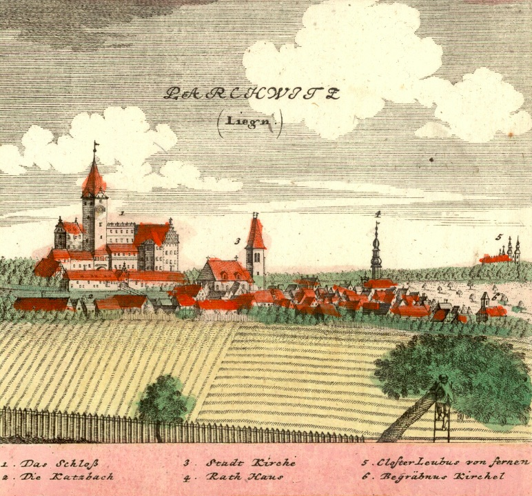 Prochowice (Parchwitz) - Rok 1738