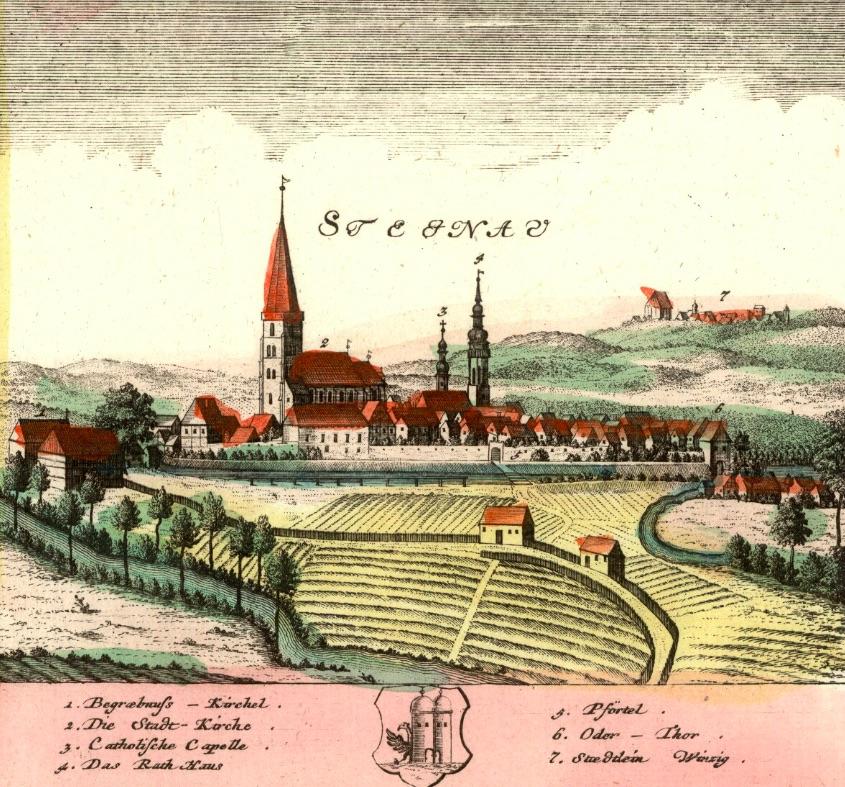 Ścinawa (Stignau) - Rok 1737