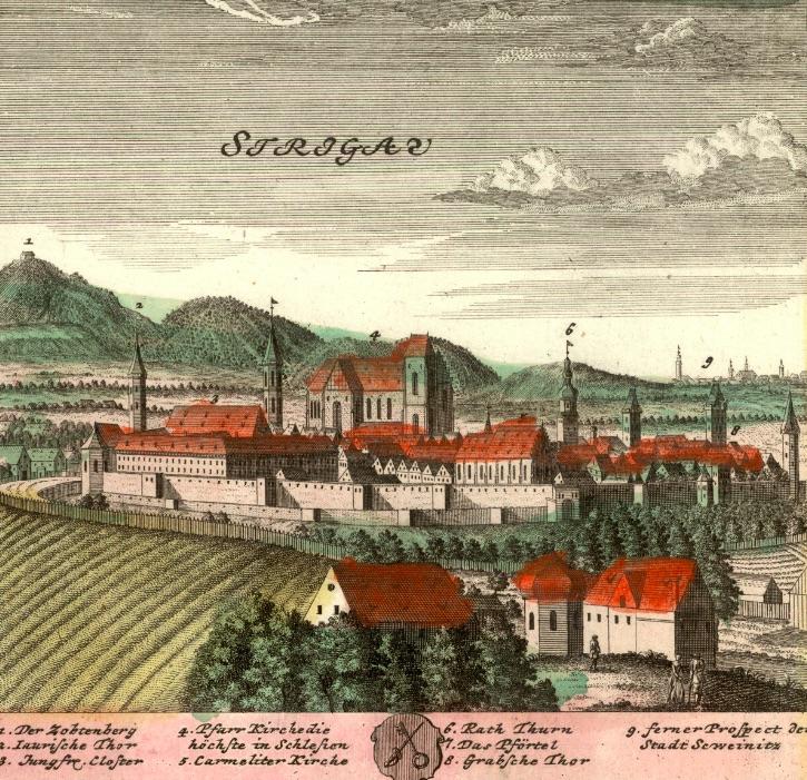 Strzegom (Strigau) - Rok 1738