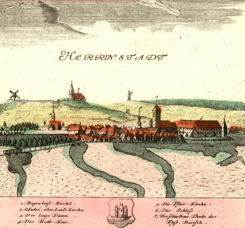 Wąsosz (Herrnstadt) - Rok 1737