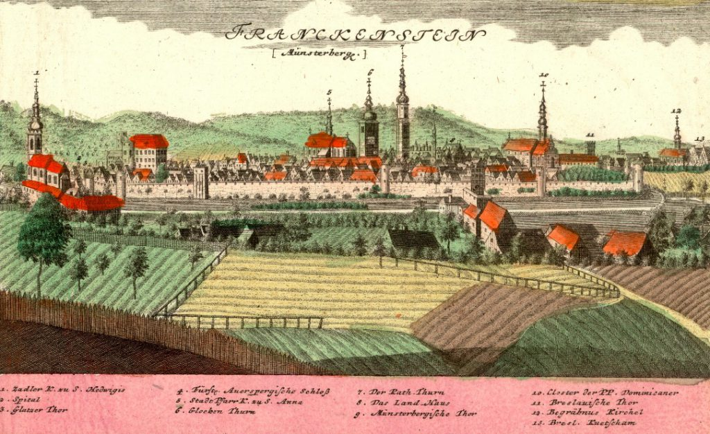 Ząbkowice Śląskie (Franckenstein) - Rok 1738