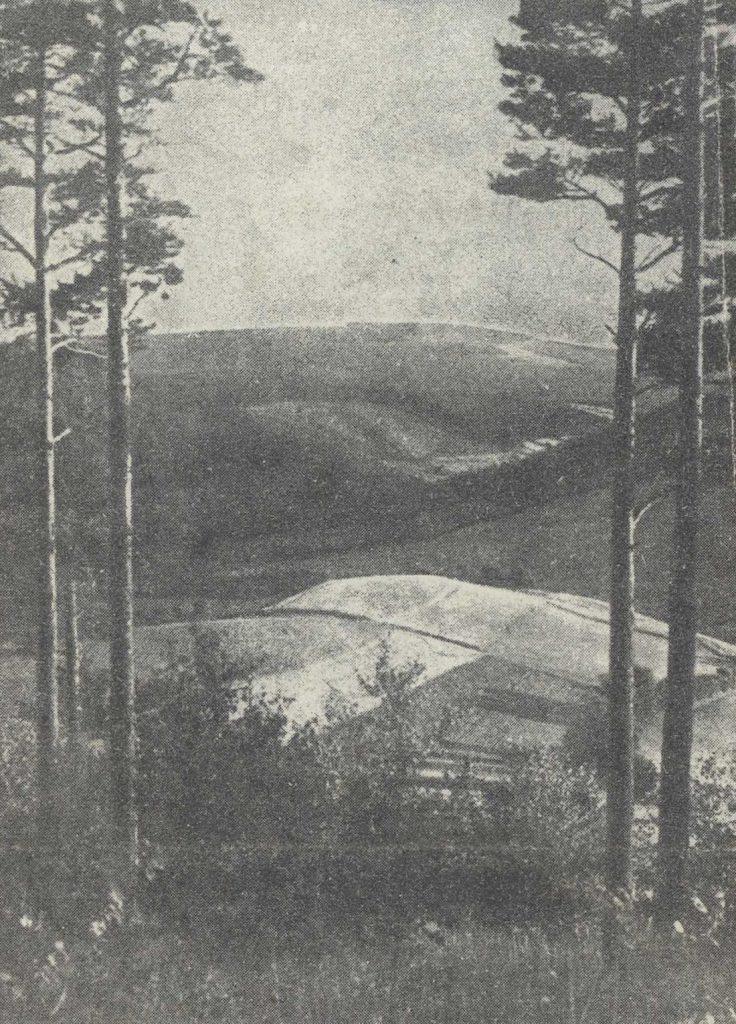 Fragment Gór Sowich - Bielawa, prawdopodobnie ul. Nowobielawska
