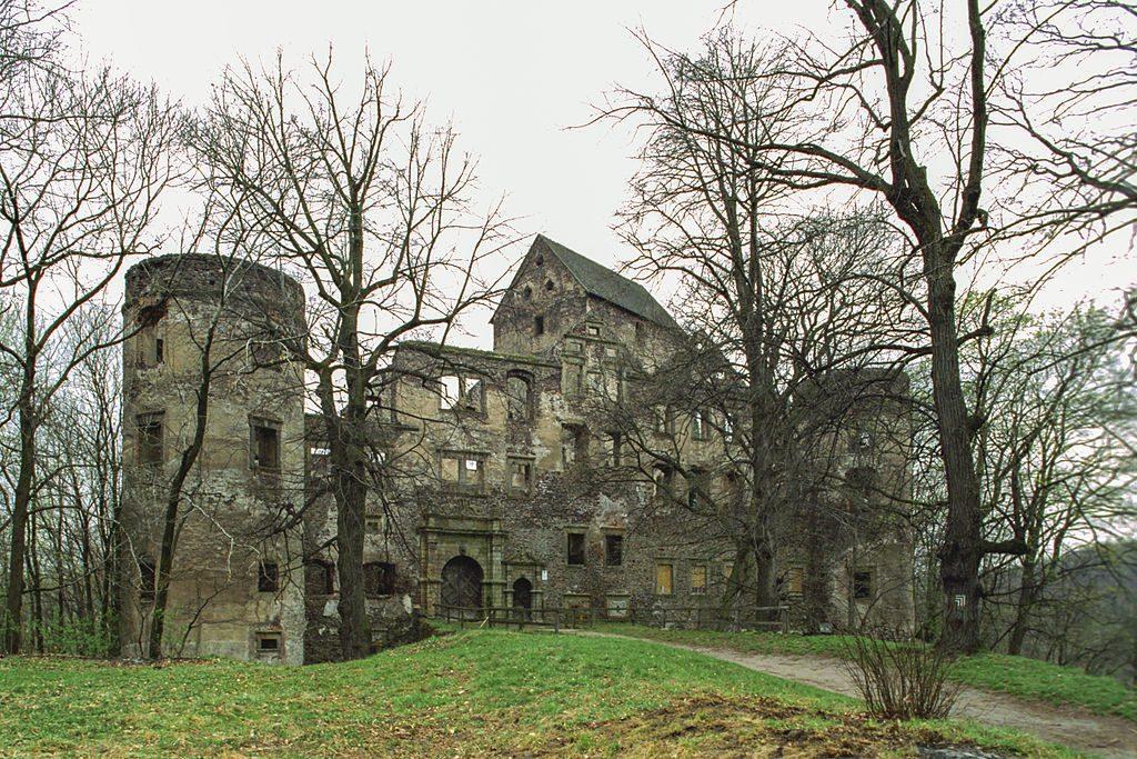 Zamek Świny - Foto: Jerzy Strzelecki Źródło: commons.wikimedia.org