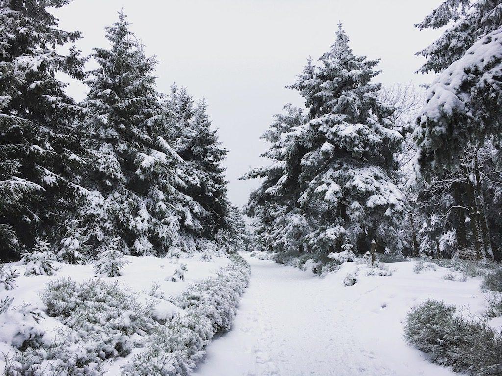 ZIma w Górach Sowich
