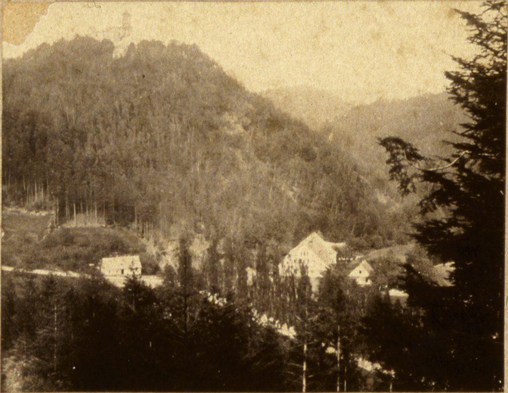 Zagórze Śląskie, w tle Zamek Grodno - Hermann Krone, 1865 rok