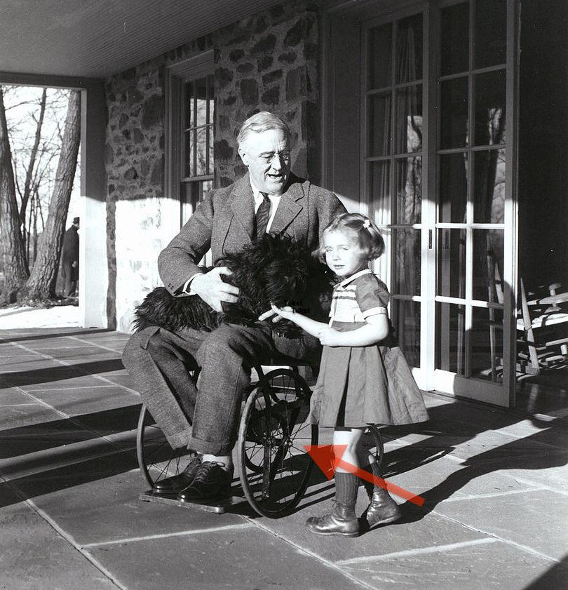 Jedno z nielicznych zdjeć, na którym Franklin D. Roosevelt siedzi na wózku inwalidzkim - Foto: Margaret Suckley Źródło: Franklin Delano Roosevelt Library