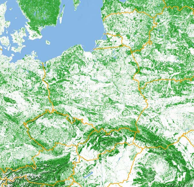 Zalesienie Polski - Źródło: jakubmarian.com