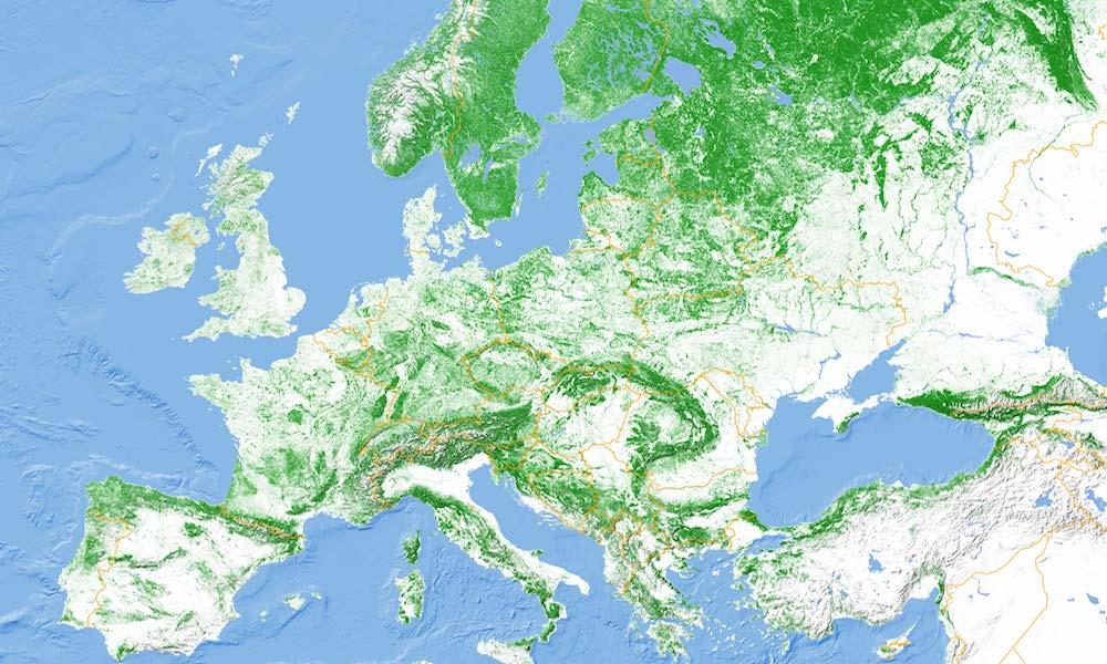 Mapa Zalesienia Terenu Europy I Polski Eloblog
