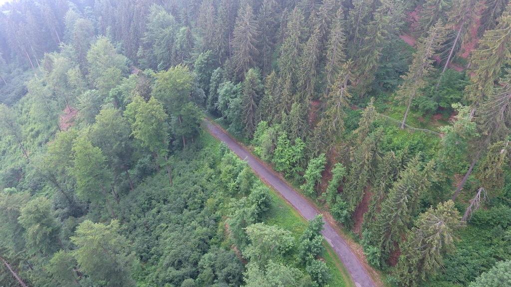 W Górach Bystrzyckich Autostrada Sudecka przebiega po zboczu Jagodnej – Foto: Michał Jabłoński