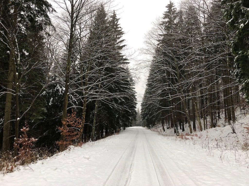 Zaśnieżona tzw. Sudecka Droga w Górach Bystrzyckich