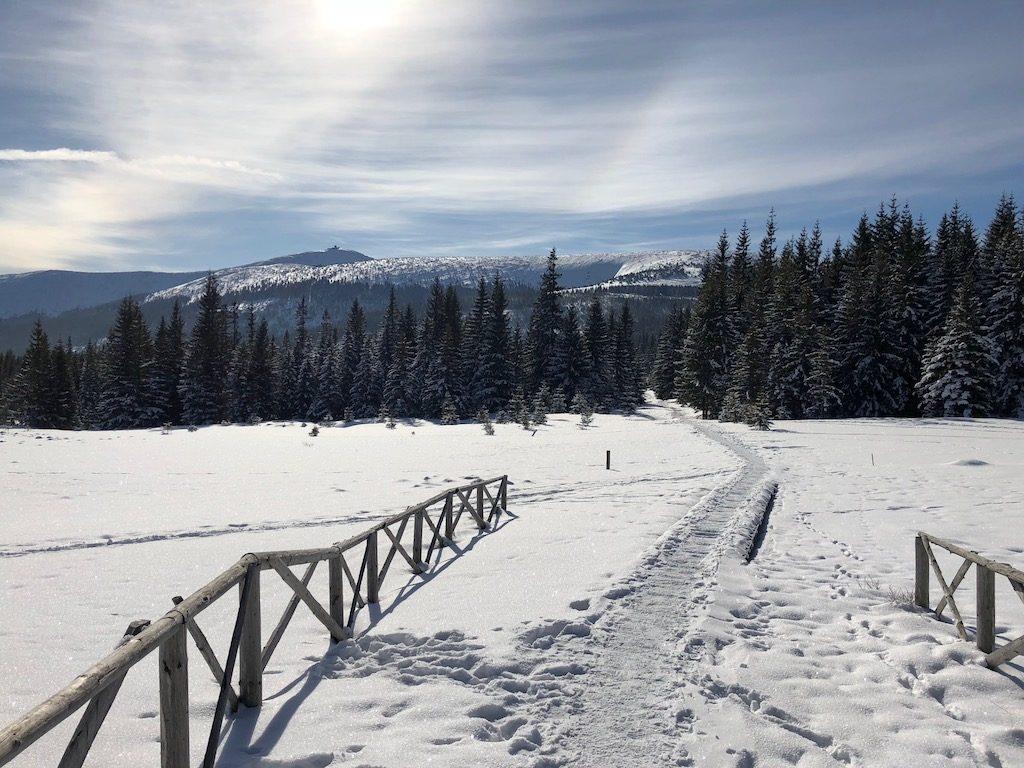 Słoneczny zimowy dzień w Karkonoszach, w tle Śnieżka