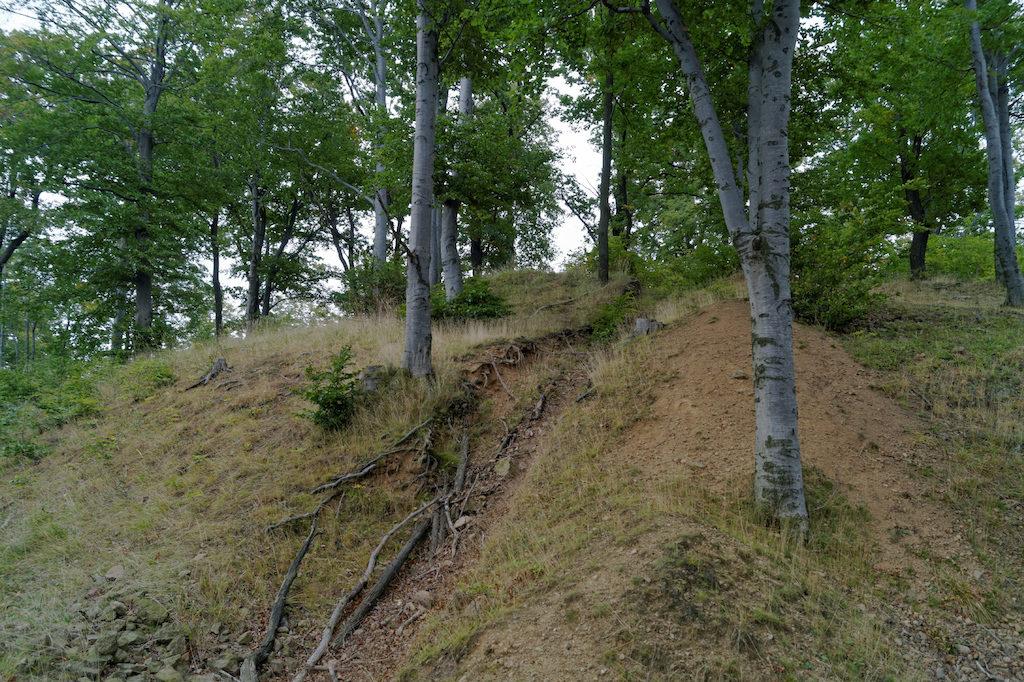 Na górze Forteczna (czasem określanej jako góra Grodzisko) stał zamek typu przejściowego
