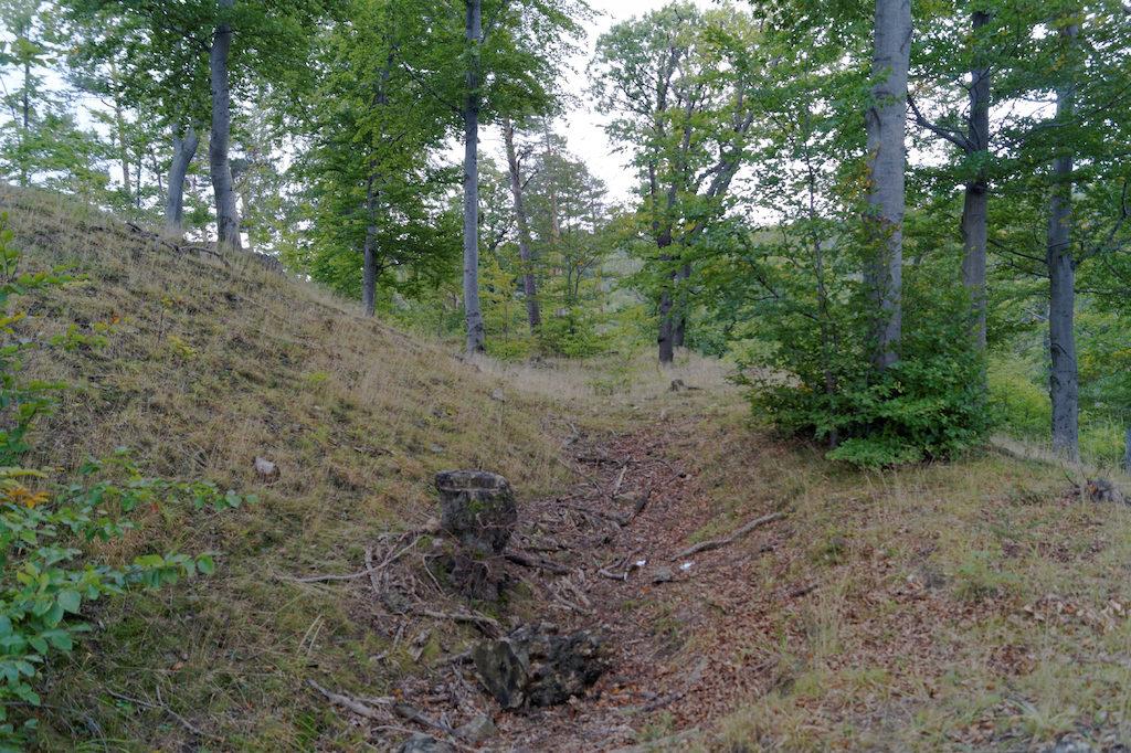 W terenie dość dobrze widoczne są ślady dawnych wałów
